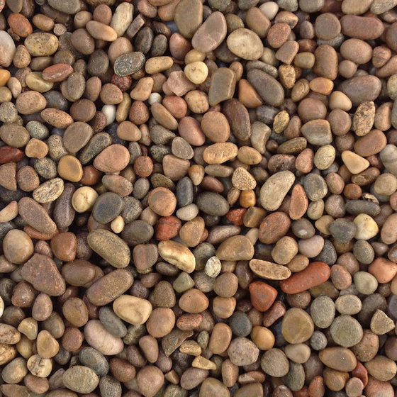 Image of Scottish Pebbles 14 - 20mm